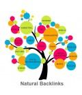 Generación de backlinks para mejorar el seo